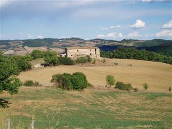 Azienda agricola, Castelnuovo Di Val Di Cecina, da ristrutturare