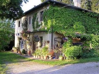 Azienda agricola, San Gimignano, abitabile