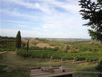 Azienda agricola, Gambassi Terme