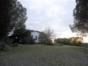 Villa, Castelfiorentino, da ristrutturare