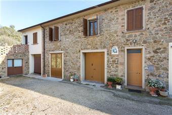 Azienda agricola, Gambassi Terme, abitabile