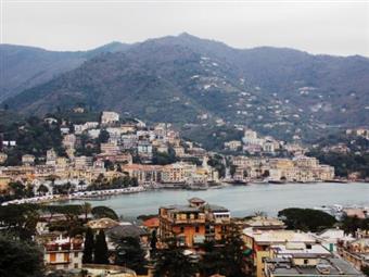 Monolocale, Rapallo, abitabile