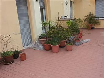 Quadrilocale, Pantano, Pesaro, abitabile