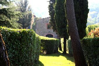 Rustico casale, Ponte a Moriano, Lucca, ristrutturato