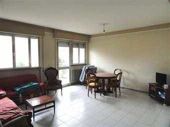 Appartamento, Ronchi, Massa, abitabile