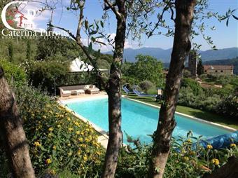 Villa, Torre, Lucca, abitabile