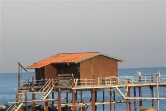 Casa singola, Ancona