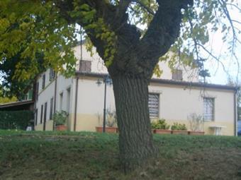 Colonica, Morro D'alba, ristrutturata