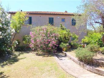 Azienda agricola in Via Campigliese, La California, Bibbona