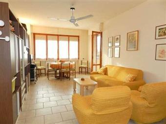 Appartamento in Via G. Donizetti, Rosignano Solvay, Rosignano Marittimo