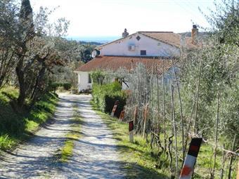 Rustico casale in Via Giorgio Fontanelli, Riparbella