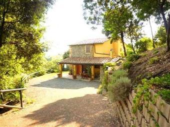 Rustico casale in Via Della Grotta, Riparbella