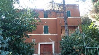 Rustico casale, Sant'egidio, Perugia, da ristrutturare