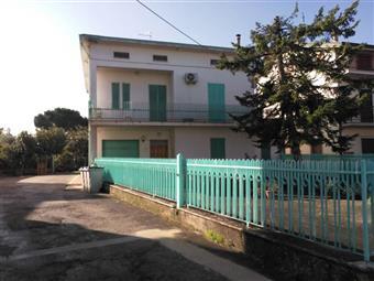 Casa singola, Bastia, abitabile