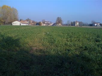 Terreno edificabile, Pieve Modolena,cella, Reggio Emilia, abitabile