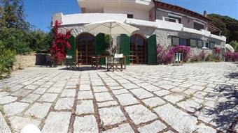 Casa semi indipendente, Seccheto, Campo Nell'elba