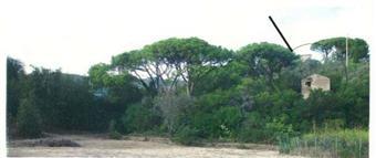 Rustico casale, Rio Nell'elba