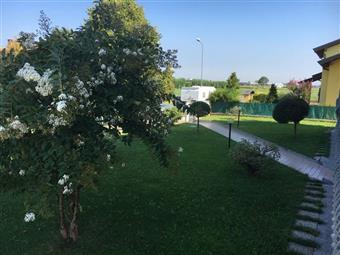Trilocale in Via Roma, Gazzola, Gazzola