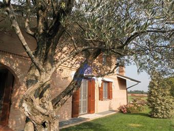 Villa, Bernareggio, seminuova