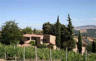 Azienda agricola, Pomarance, in ottime condizioni