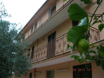 Villa, Giardinello