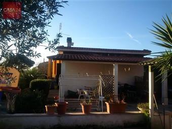 Casa singola, Borgo Sabotino, Latina