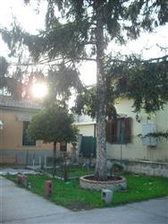 Casa singola in Via Torello Baracchini, Marina Di Massa, Massa