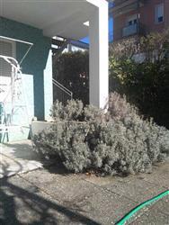 Casa singola in Via Dante, Riccione