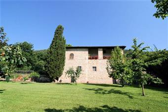 Rustico casale in Maggiano, Maggiano, Lucca