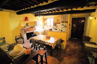 Rustico casale in Via Sarzanese Sud 1893, Quiesa, Massarosa