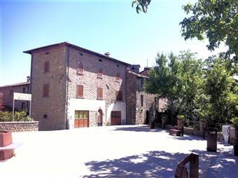 Casa semi indipendente in Piazza Pelliccioni, San Romano In Garfagnana