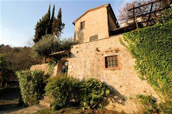 Rustico casale, Capriglia, Pietrasanta, ristrutturato