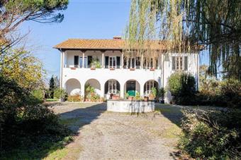 Villa, Querce, Fucecchio, ristrutturata