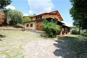 Rustico casale in Via Arsina, Lucca