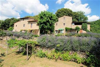 Rustico casale, Castelfranco Piandisco, seminuovo
