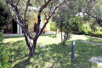 Stanza / Camera, San Vincenzo, in ottime condizioni