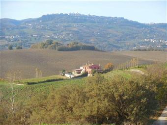 Trilocale in Vittorio Emanuele, Cingoli