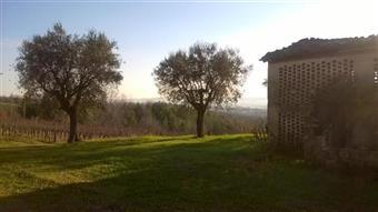 Casa singola in Ceccacci, Maiolati Spontini