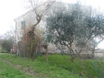 Rustico casale in San Michele, San Paolo Di Jesi