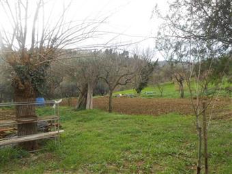 Villino in Battinebbia, San Paolo Di Jesi