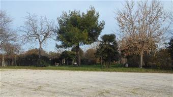 Rustico casale in Via Borgo Garibaldi, Monte San Vito