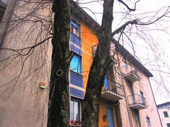 Bilocale, Masnago, Varese, ristrutturato
