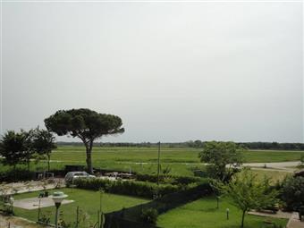 Rustico casale, Marina Di Pisa, Pisa, abitabile