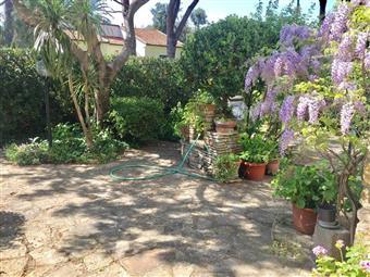 Villa, Tirrenia, Pisa, abitabile