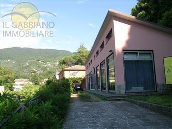 Locale commerciale in Via Filippo Da Recco, Megli, Recco