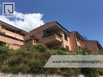 Trilocale, Borgo: San Rocco, Rocca Priora