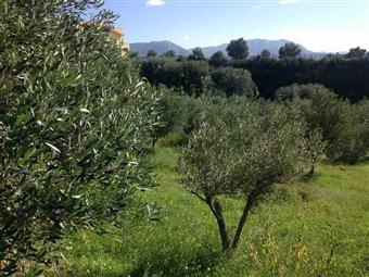 Terreno edificabile in Gallina, Reggio Calabria