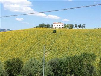 Casa singola in Curetta, Servigliano