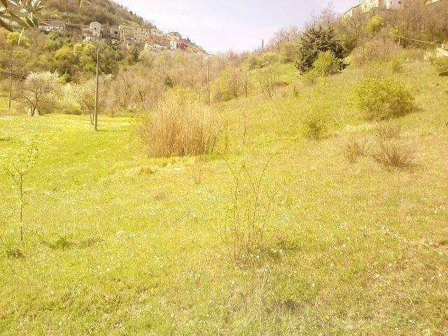 IMG_20130413_120959 (640x480).jpg: Rustico casale in C.da San Giacomo, San Fele